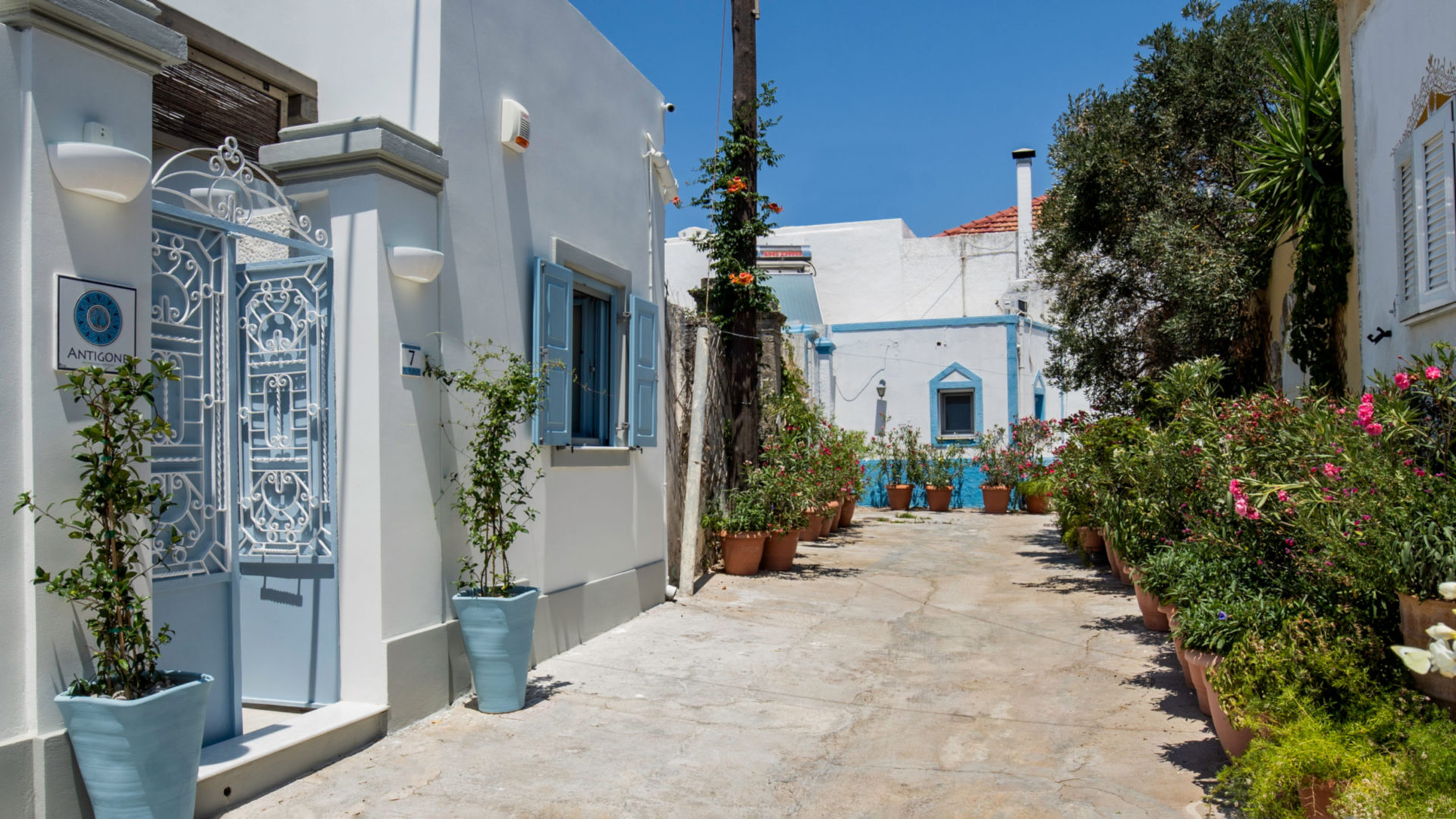 The alley leading to Antigone Traditional House